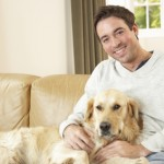 3 Tips to Ensure You Score the Pet-Friendly Apartment of Your Dreams