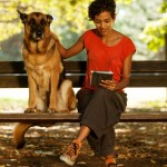 4 Apps That Help You Care for Your Pet