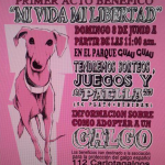 112 Carlota Galgos Fun Day: Stalls Required