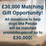 £30,000 Matching Gift Opportunity