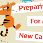 Preparing For A New Cat