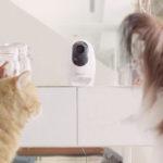 Acer reveals 'Pawbo' pet accessories