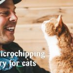 Sign the petition to make microchipping compulsory